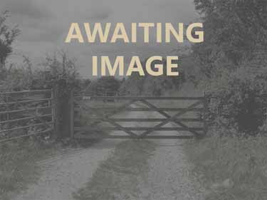Land for sale with smallholding Potentia...