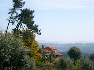 Organic Smallholding in Central Portugal