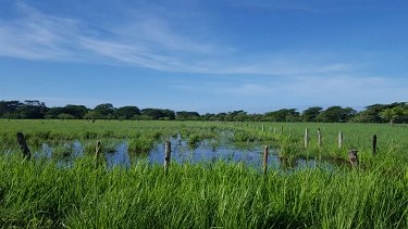 FARM IN NICARAGUA OF 939.6 ACRES