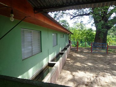 FARM IN NICARAGUA OF 304.5 ACRES