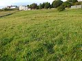 5 acre smallholding with 4 stables and a...