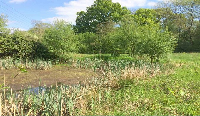 6.5ac,amenity fishing,river frontage, road access, woodland.