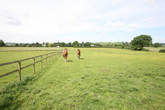 Detached Barn Conversion and Equestrian facilities